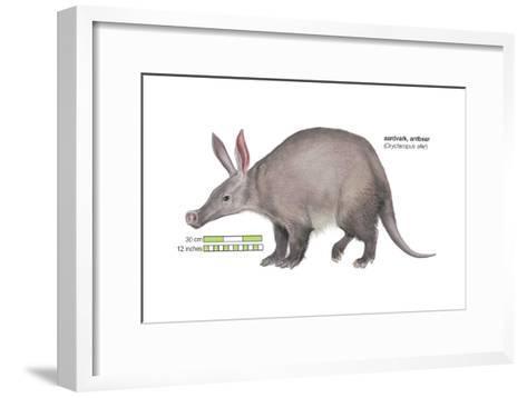 Aardvark or Antbear (Orycteropus Afer), Mammals-Encyclopaedia Britannica-Framed Art Print