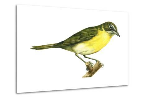 Yellow-Breasted Chat (Icteria Virens), Birds-Encyclopaedia Britannica-Metal Print