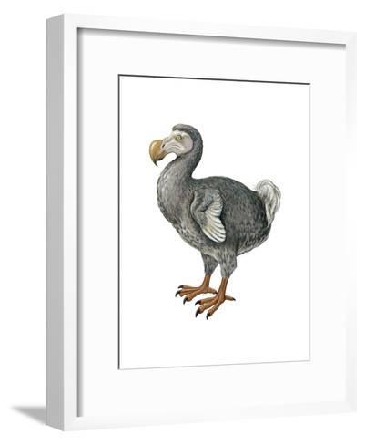Dodo (Raphus Cucullatus), Birds-Encyclopaedia Britannica-Framed Art Print