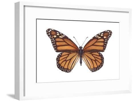 Monarch Butterfly (Danaus Plexippus), Milkweed Butterfly, Insects-Encyclopaedia Britannica-Framed Art Print