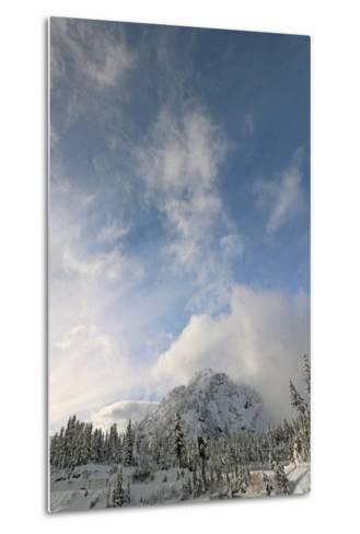 Scenic View of Mount Baker Volcano Snoqualmie National Forest-Donna O'Meara-Metal Print