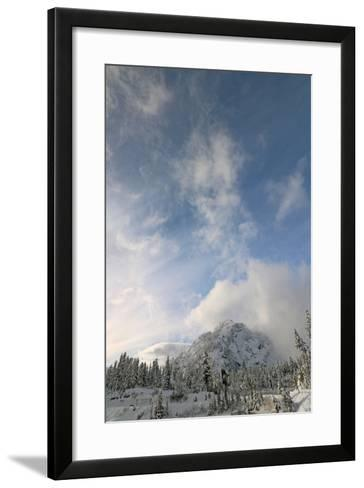 Scenic View of Mount Baker Volcano Snoqualmie National Forest-Donna O'Meara-Framed Art Print