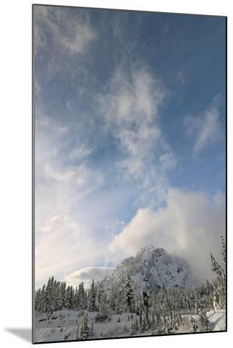 Scenic View of Mount Baker Volcano Snoqualmie National Forest-Donna O'Meara-Mounted Photographic Print