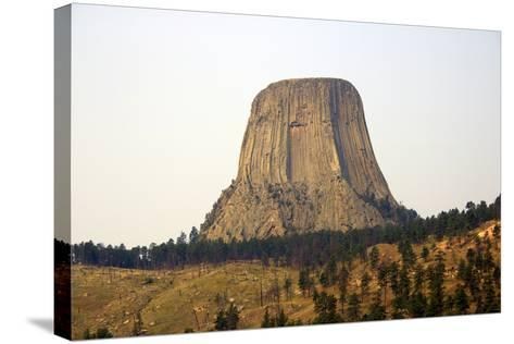 Devils Tower National Monument in Wyoming, Usa-Donna O'Meara-Stretched Canvas Print
