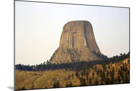 Devils Tower National Monument in Wyoming, Usa-Donna O'Meara-Mounted Photographic Print