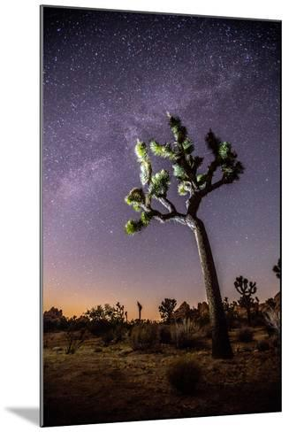 A Joshua Tree under the Milky Way-Ben Horton-Mounted Photographic Print