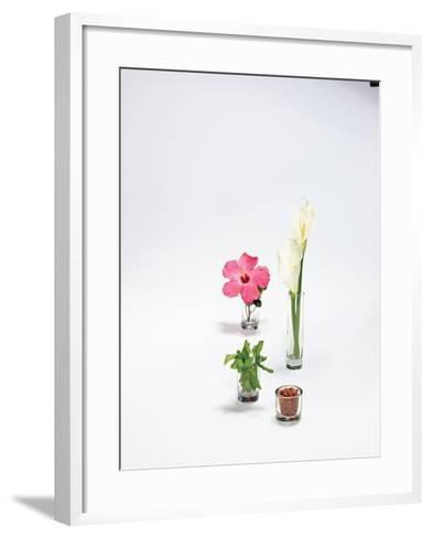 Customized Fragrances are Amenities in Hotels-Rebecca Hale-Framed Art Print