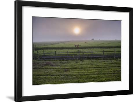 A Man Walks Through Agricultural Fields-Cory Richards-Framed Art Print