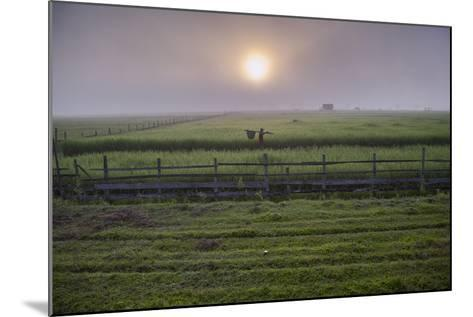 A Man Walks Through Agricultural Fields-Cory Richards-Mounted Photographic Print