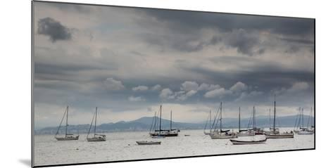 Fishing Boats Line Up Near the Coast of Florianopolis Island in Santa Catarina, Brazil-Alex Saberi-Mounted Photographic Print