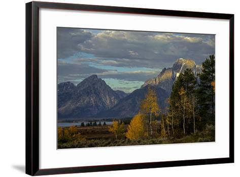 Grand Teton Mountains and Trees in Autumn-Beverly Joubert-Framed Art Print