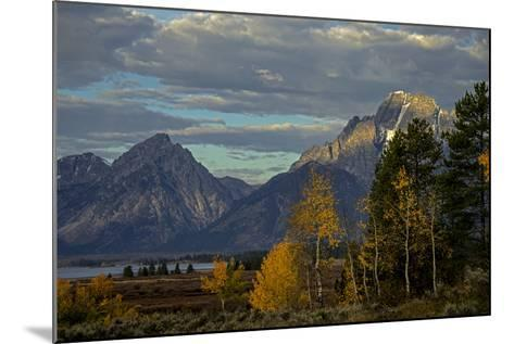Grand Teton Mountains and Trees in Autumn-Beverly Joubert-Mounted Photographic Print