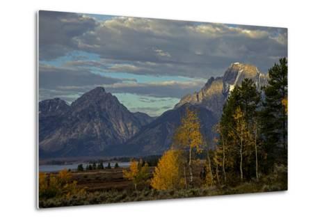 Grand Teton Mountains and Trees in Autumn-Beverly Joubert-Metal Print