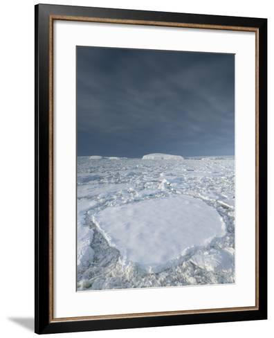 Entrance of the Lemaire Channel Along the Antarctic Peninsula-Jeff Mauritzen-Framed Art Print