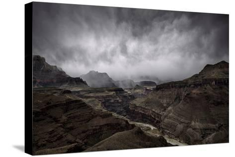 The Central Grand Canyon-Peter Mcbride-Stretched Canvas Print