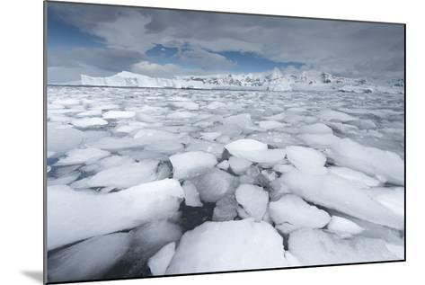 Sea Ice Floats in Fournier Bay, Antarctica-Jeff Mauritzen-Mounted Photographic Print
