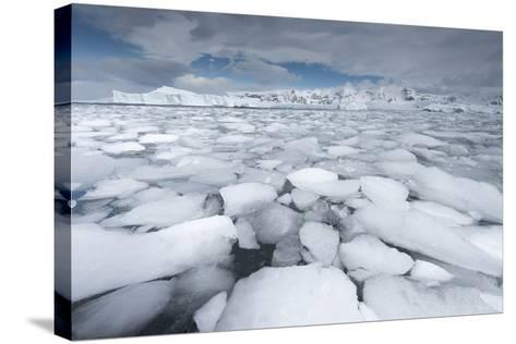 Sea Ice Floats in Fournier Bay, Antarctica-Jeff Mauritzen-Stretched Canvas Print