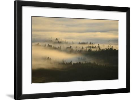 Early Morning Fog over the Olympic Mountains, from Hurricane Ridge-Raul Touzon-Framed Art Print