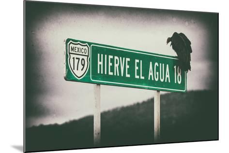 ¡Viva Mexico! Collection - Vulture II-Philippe Hugonnard-Mounted Photographic Print