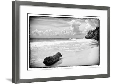 ?Viva Mexico! B&W Collection - Tree Trunk on a Caribbean Beach-Philippe Hugonnard-Framed Art Print