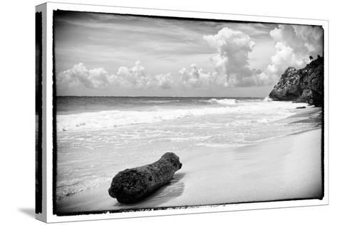 ?Viva Mexico! B&W Collection - Tree Trunk on a Caribbean Beach-Philippe Hugonnard-Stretched Canvas Print
