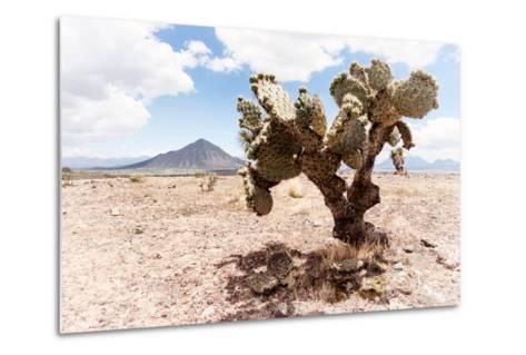 ?Viva Mexico! Collection - Desert Landscape - Puebla II-Philippe Hugonnard-Metal Print
