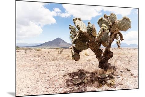 ?Viva Mexico! Collection - Desert Landscape - Puebla II-Philippe Hugonnard-Mounted Photographic Print