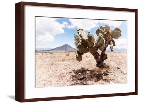 ?Viva Mexico! Collection - Desert Landscape - Puebla II-Philippe Hugonnard-Framed Art Print