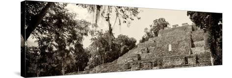 ¡Viva Mexico! Panoramic Collection - Pyramyd of the ancient Mayan City - Calakmul-Philippe Hugonnard-Stretched Canvas Print