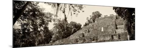¡Viva Mexico! Panoramic Collection - Pyramyd of the ancient Mayan City - Calakmul-Philippe Hugonnard-Mounted Photographic Print