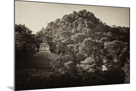 ?Viva Mexico! B&W Collection - Mayan Ruins in Palenque at Sunrise-Philippe Hugonnard-Mounted Photographic Print
