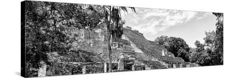 ¡Viva Mexico! Panoramic Collection - Pyramyd of the ancient Mayan City VII - Calakmul-Philippe Hugonnard-Stretched Canvas Print