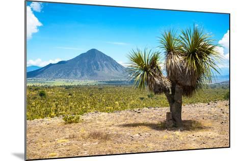 ¡Viva Mexico! Collection - Desert Landscape - Puebla IV-Philippe Hugonnard-Mounted Photographic Print