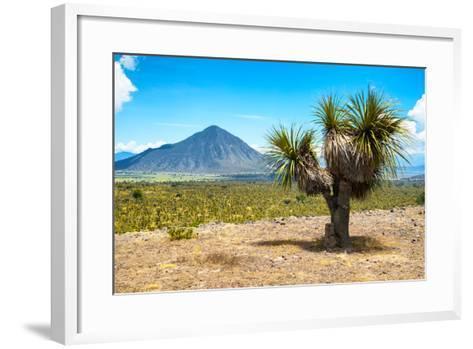 ¡Viva Mexico! Collection - Desert Landscape - Puebla IV-Philippe Hugonnard-Framed Art Print