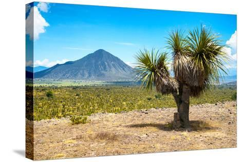 ¡Viva Mexico! Collection - Desert Landscape - Puebla IV-Philippe Hugonnard-Stretched Canvas Print