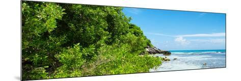 ¡Viva Mexico! Panoramic Collection - Isla Mujeres Coastline-Philippe Hugonnard-Mounted Photographic Print