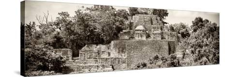 ?Viva Mexico! Panoramic Collection - Pyramid in Mayan City of Calakmul II-Philippe Hugonnard-Stretched Canvas Print
