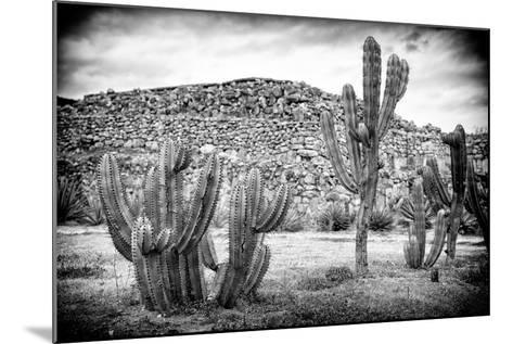 ¡Viva Mexico! B&W Collection - Mexican Cactus-Philippe Hugonnard-Mounted Photographic Print