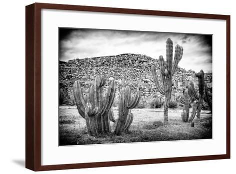 ¡Viva Mexico! B&W Collection - Mexican Cactus-Philippe Hugonnard-Framed Art Print