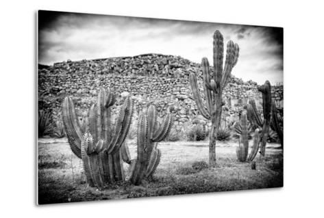 ¡Viva Mexico! B&W Collection - Mexican Cactus-Philippe Hugonnard-Metal Print