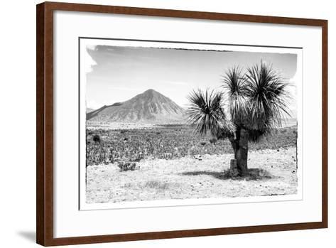 ¡Viva Mexico! B&W Collection - Mexican Desert-Philippe Hugonnard-Framed Art Print