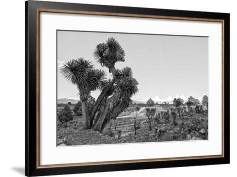 ?Viva Mexico! B&W Collection - Pyramid of Puebla VIII (Cantona Ruins)-Philippe Hugonnard-Framed Art Print