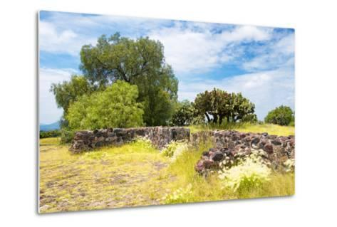 ¡Viva Mexico! Collection - Mexican Vegetation-Philippe Hugonnard-Metal Print