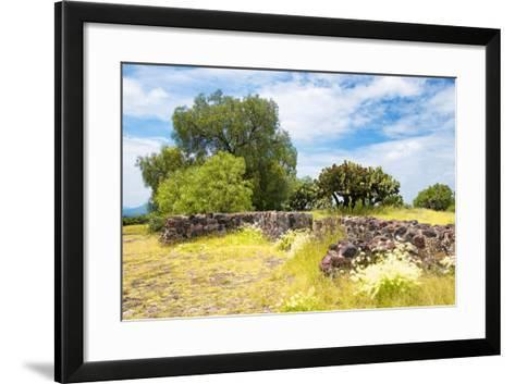 ¡Viva Mexico! Collection - Mexican Vegetation-Philippe Hugonnard-Framed Art Print