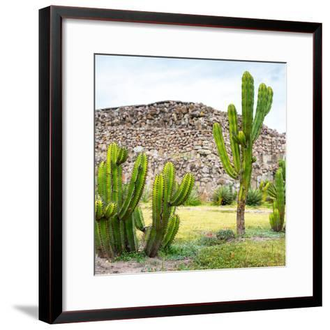 ¡Viva Mexico! Square Collection - Mexican Cactus II-Philippe Hugonnard-Framed Art Print
