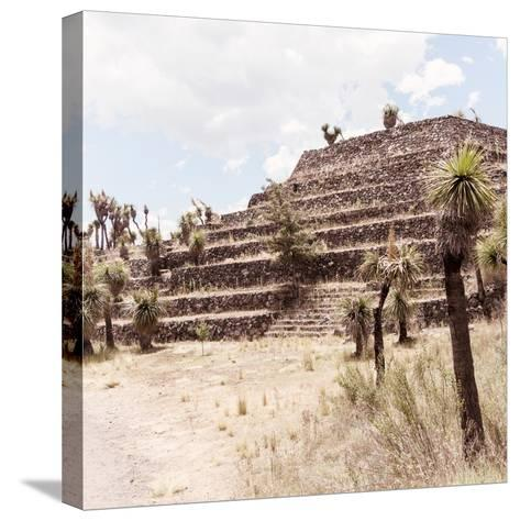 ¡Viva Mexico! Square Collection - Cantona Archaeological Ruins VII-Philippe Hugonnard-Stretched Canvas Print