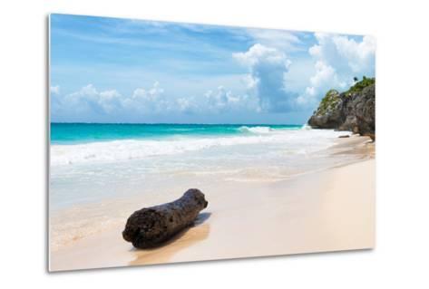 ?Viva Mexico! Collection - Tree Trunk on a Caribbean Beach-Philippe Hugonnard-Metal Print