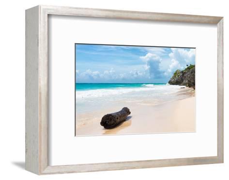?Viva Mexico! Collection - Tree Trunk on a Caribbean Beach-Philippe Hugonnard-Framed Art Print