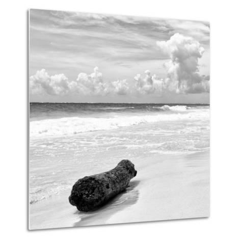 ¡Viva Mexico! Square Collection - Tree Trunk on a Caribbean Beach II-Philippe Hugonnard-Metal Print