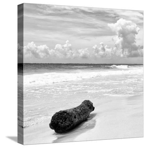 ¡Viva Mexico! Square Collection - Tree Trunk on a Caribbean Beach II-Philippe Hugonnard-Stretched Canvas Print